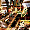 An Artist's Tools by David Patterson