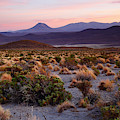 Andean Steppes At Sunset Isluga National Park Chile by James Brunker