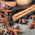Anise, Cinnamon, And Walnuts  4840 By Tl Wilson Photography  by Teresa Wilson