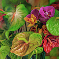 Anthurium Riot by Jade Moon