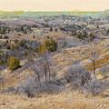 April Prairie Reverie by Cris Fulton