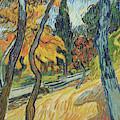 Arbres Dans Le Jardin De L Asile, 1889 by Vincent Van Gogh
