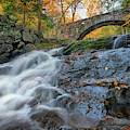 Arch Bridge At Vaughan Woods by Rick Berk