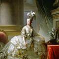 Archduchess Marie Antoinette  by Elisabeth Louise Vigee LeBrun