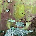 Art Print Abstract 33 by Harry Gruenert