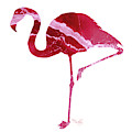 Art Sea Flamingo In Hot Pink by Micki Findlay