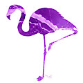 Art Sea Flamingo In Purple by Micki Findlay