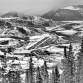 Aspen Airport Over The Pines Black And White by Adam Jewell
