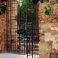 At The Alcazar Cordoba Spain by Joan Carroll
