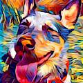 Australian Cattle Dog 2 by Chris Butler