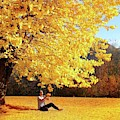 Autumn  by Alex Mur