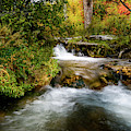 Autumn Along The Provo Deer Creek by TL Mair
