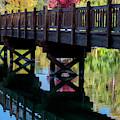 Autumn Bridge by David Millenheft