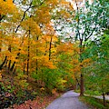 Autumn Country Road by Christopher Shellhammer