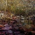 Autumn Creek 6233 Idp_2 by Steven Ward