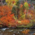 Autumn Creek by Leland D Howard