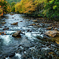 Autumn Day On Cranberry River by Thomas R Fletcher