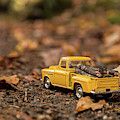 Autumn Drive by Karin Pinkham