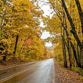 Autumn Drive by Susan Rydberg
