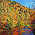 Autumn Fly Fishing by Greg Norrell