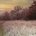 Autumn Frost by Alex Lim