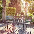 Autumn Garden Cafe  by Ariadna De Raadt