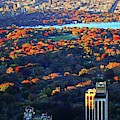 Autumn In Central Park New York Ny Fall Foliage Buildings by Toby McGuire