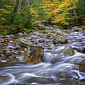 Autumn In Nh by Sharon Seaward