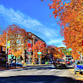 Autumn In Pullman by David Patterson