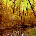 Autumn - Krasna River by Henryk Gorecki