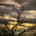 Autumn Into Winter by Bob Orsillo