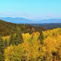 Autumn Leaves And The Sangre De Cristo by Steve Krull