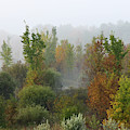 Autumn Morning Fog by Tatiana Travelways