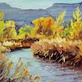 Autumn On The Fremont River  by Steve Henderson