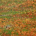 Autumn Quilt2u by Allen Nice-Webb