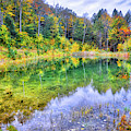 Autumn Reflections At The Pond II by Lynn Bauer