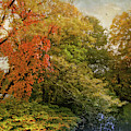 Autumn Riches by Jessica Jenney