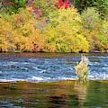 Autumn River by David Millenheft