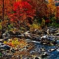 Autumn River Dreams by Allen Nice-Webb