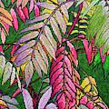 Autumn Sumac by Lynn Hansen