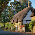 Autumn Thatched Cottage In Broadway by Tim Gainey