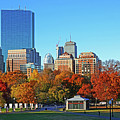 Autumn Trees In The Boston Common Blue Sky Boston Ma by Toby McGuire