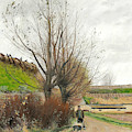 Autumn Weather. A Man With A Wheelbarrow On A Path by Laurits Andersen Ring