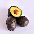 Avocado Square Format by Kae Cheatham