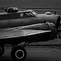B-17 Sally-b Taxiing Black And White  by Scott Lyons