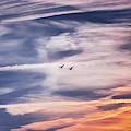 Back To The Sky by Jaroslav Buna