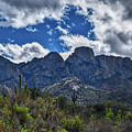 Backside Of The Catalinas by Chance Kafka