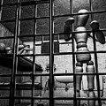 Bail Denied  by Bob Orsillo