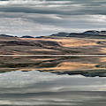Balanced Reflection by Leland D Howard