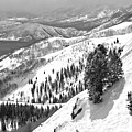Bald Mountain Expert Slopes Black And White by Adam Jewell